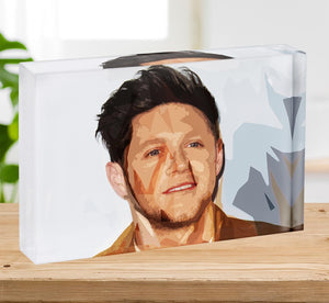 Niall Horan of One Direction Pop Art Acrylic Block - Canvas Art Rocks - 2