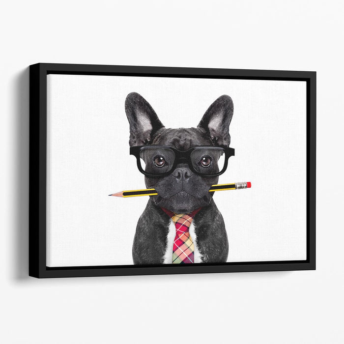 Office businessman french bulldog dog with pen Floating Framed Canvas