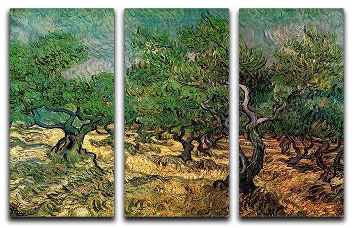 Olive Grove 2 by Van Gogh 3 Split Panel Canvas Print