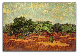 Olive Grove Pale Blue Sky by Van Gogh Canvas Print & Poster  - Canvas Art Rocks - 1
