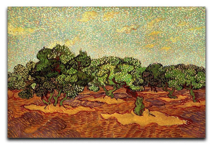 Olive Grove Pale Blue Sky by Van Gogh Canvas Print or Poster