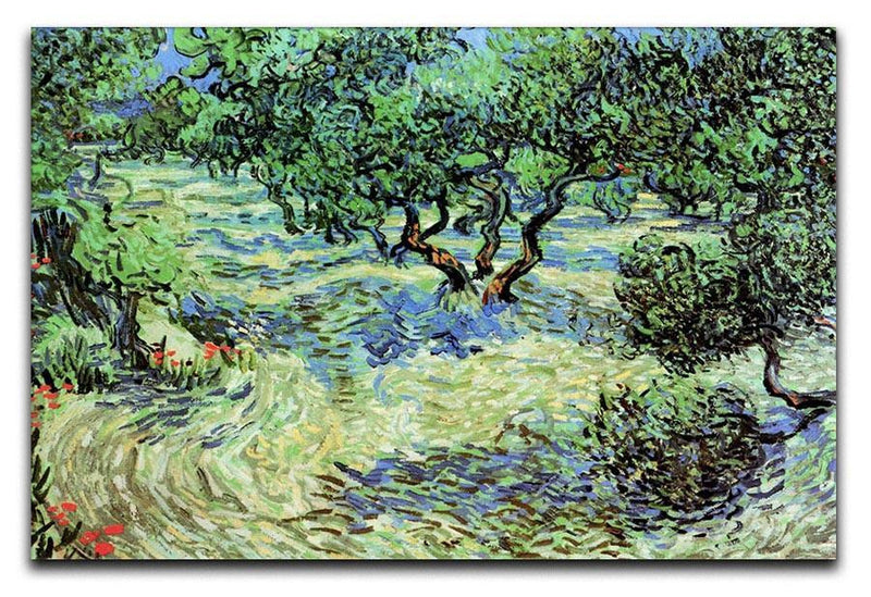 Olive Grove by Van Gogh Canvas Print & Poster  - Canvas Art Rocks - 1