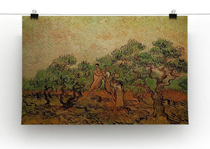 Olive Picking by Van Gogh Canvas Print & Poster - Canvas Art Rocks - 2