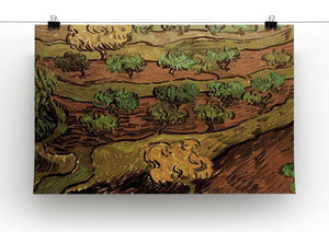 Olive Trees against a Slope of a Hill by Van Gogh Canvas Print & Poster - Canvas Art Rocks - 2