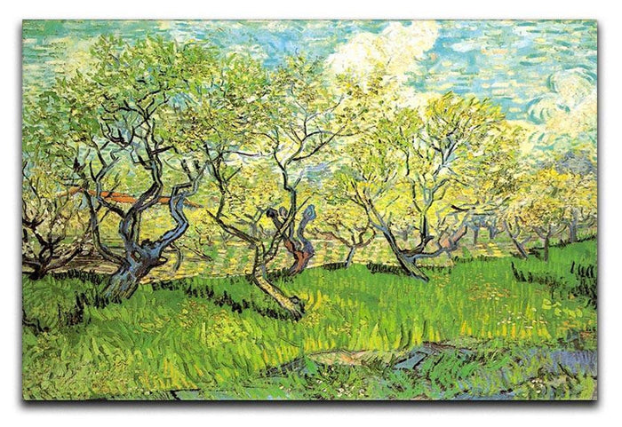 Orchard in Blossom 2 by Van Gogh Canvas Print or Poster