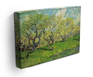 Orchard in Blossom 2 by Van Gogh Canvas Print & Poster - Canvas Art Rocks - 3