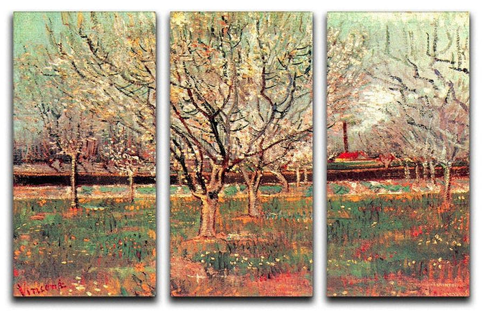 Orchard in Blossom Plum Trees by Van Gogh 3 Split Panel Canvas Print