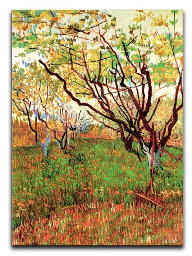 Orchard in Blossom by Van Gogh Canvas Print or Poster