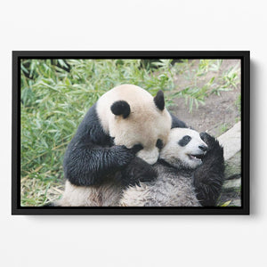 Panda bear and her cub Floating Framed Canvas - Canvas Art Rocks - 2