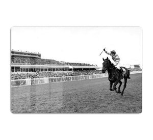 Party Politics romps home in the Grand National HD Metal Print - Canvas Art Rocks - 1