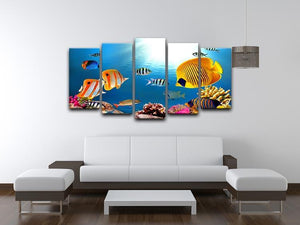 Photo of a coral colony 5 Split Panel Canvas  - Canvas Art Rocks - 3