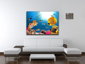 Photo of a coral colony Canvas Print or Poster - Canvas Art Rocks - 4
