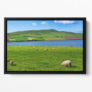 Photo sheep in rural landscape for farming Floating Framed Canvas - Canvas Art Rocks - 2