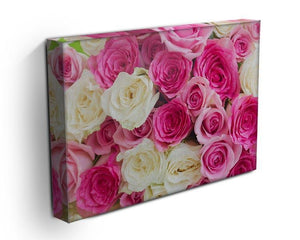 Pink and white fresh rose flowers Canvas Print or Poster - Canvas Art Rocks - 3