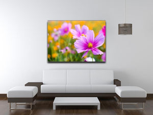 Pink cosmos in the flower fields Canvas Print or Poster - Canvas Art Rocks - 4