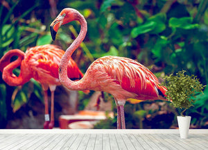 Pink flamingo close-up in Singapore zoo Wall Mural Wallpaper - Canvas Art Rocks - 4