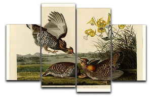 Pinnated Grouse by Audubon 4 Split Panel Canvas - Canvas Art Rocks - 1