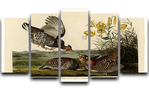 Pinnated Grouse by Audubon 5 Split Panel Canvas - Canvas Art Rocks - 1