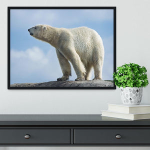 Polar bear walking on rocks Framed Print - Canvas Art Rocks - 2