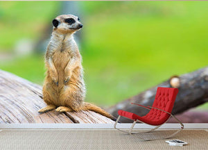 Portrait of Meerkat Wall Mural Wallpaper - Canvas Art Rocks - 2