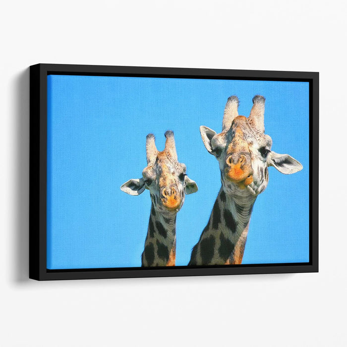 Portrait of mother and baby giraffe. Africa. Kenya Floating Framed Canvas