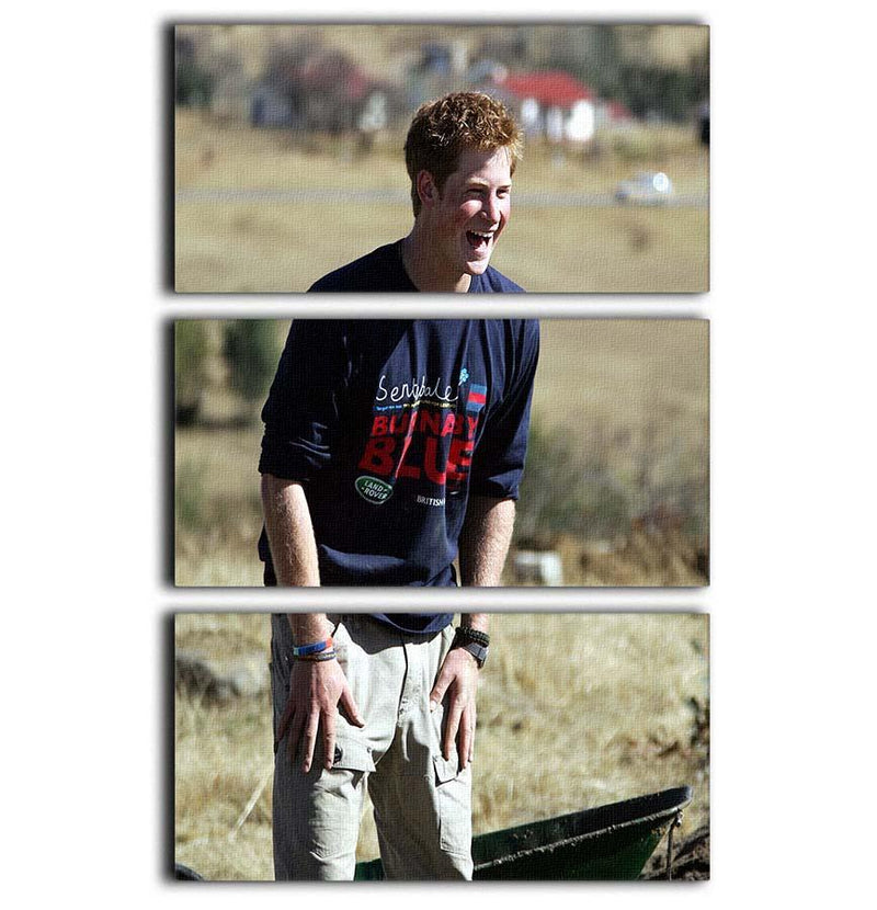 Prince Harry helping build a school in Lesotho South Africa 3 Split Panel Canvas Print - Canvas Art Rocks - 1