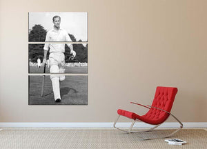 Prince Philip as cricket captain in a charity match 3 Split Panel Canvas Print - Canvas Art Rocks - 2
