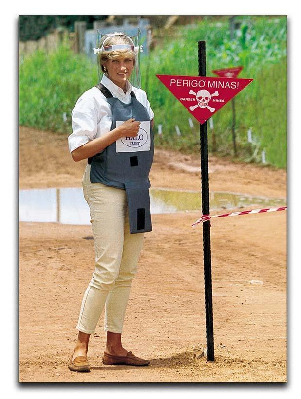Princes Diana at a mine field in Angola for a Red Cross visit Canvas Print or Poster  - Canvas Art Rocks - 1