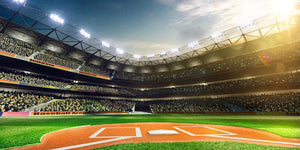 Professional baseball grand arena Wall Mural Wallpaper - Canvas Art Rocks - 1