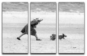 Queen Elizabeth II walking her pet corgis on a Norfolk beach 3 Split Panel Canvas Print - Canvas Art Rocks - 1