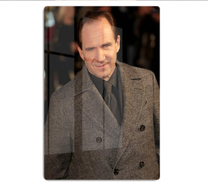 Ralph Fiennes HD Metal Print - Canvas Art Rocks - 1