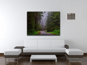 Redwood National Park Print - Canvas Art Rocks - 4
