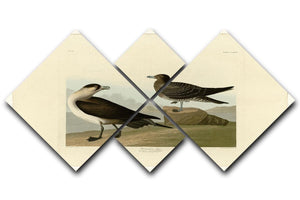 Richardsons Jager by Audubon 4 Square Multi Panel Canvas - Canvas Art Rocks - 1