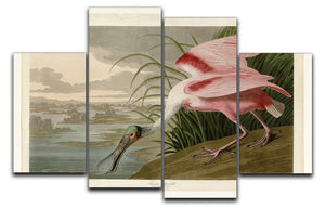Roseate Spoonbill by Audubon 4 Split Panel Canvas - Canvas Art Rocks - 1
