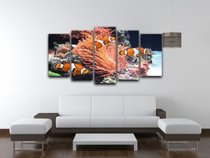 Sea anemone 5 Split Panel Canvas  - Canvas Art Rocks - 3