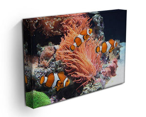 Sea anemone Canvas Print or Poster - Canvas Art Rocks - 3