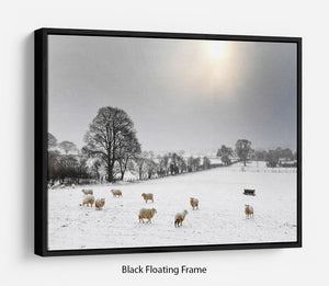 Sheep in the snow Floating Frame Canvas - Canvas Art Rocks - 1