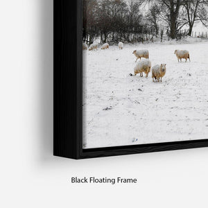 Sheep in the snow Floating Frame Canvas - Canvas Art Rocks - 2