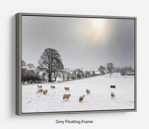 Sheep in the snow Floating Frame Canvas - Canvas Art Rocks - 3