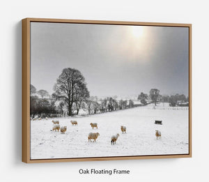 Sheep in the snow Floating Frame Canvas - Canvas Art Rocks - 9