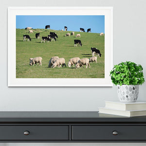 Sheeps in green rural meadow with cows Framed Print - Canvas Art Rocks - 5