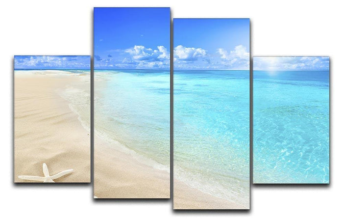 Shells on sunny beach 4 Split Panel Canvas