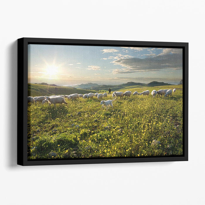 Shepherd with dog and sheep Floating Framed Canvas