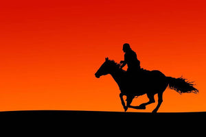 Silhouette of a horse and rider at sunset Wall Mural Wallpaper - Canvas Art Rocks - 1