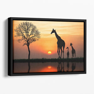 Silhouette of giraffe with reflection in water Floating Framed Canvas - Canvas Art Rocks - 1