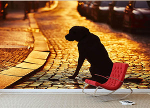 Silhouette of the dog on the street at sunset Wall Mural Wallpaper - Canvas Art Rocks - 2