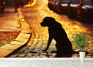 Silhouette of the dog on the street at sunset Wall Mural Wallpaper - Canvas Art Rocks - 4