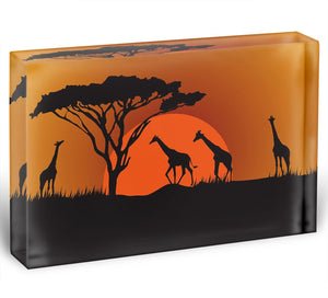 Silhouettes of giraffes in safari sunset Acrylic Block - Canvas Art Rocks - 1