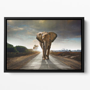Single elephant walking in a road Floating Framed Canvas - Canvas Art Rocks - 2