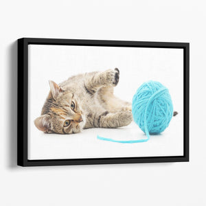 Small funny kitten and clew of thread Floating Framed Canvas - Canvas Art Rocks - 1